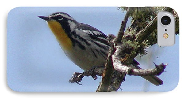 IPhone Case featuring the photograph Yellow-throated Warbler by Roena King