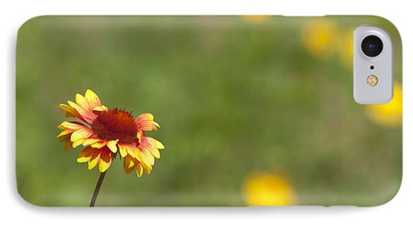IPhone Case featuring the photograph Yep...a Flower by John Crothers