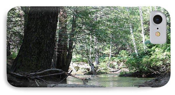 Yosemite Creek Phone Case by Remegio Onia
