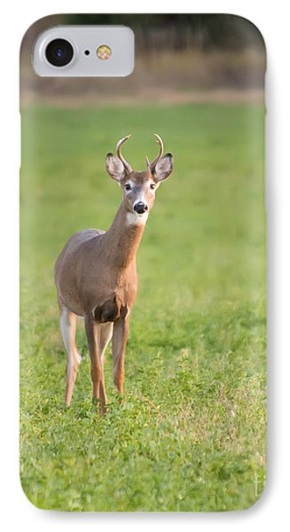 Young Buck IPhone Case by Art Whitton