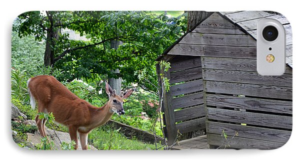 IPhone Case featuring the photograph Young Buck At Treehouse Hopatcong by Maureen E Ritter
