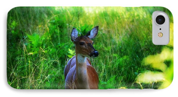 Young Deer IPhone Case by Peggy Franz