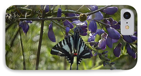 Zebra Swallowtail Butterfly 2 IPhone Case