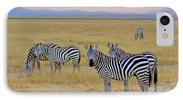 Zebras In The Morning Phone Case by Pravine Chester