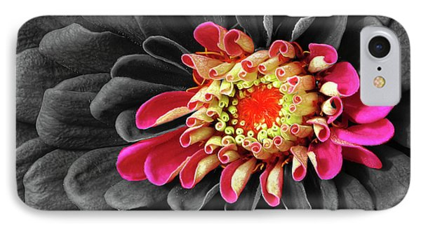 Zinnia Phone Case by Dave Mills