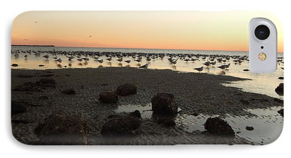 Beach Rocks Barnacles And Birds IPhone Case