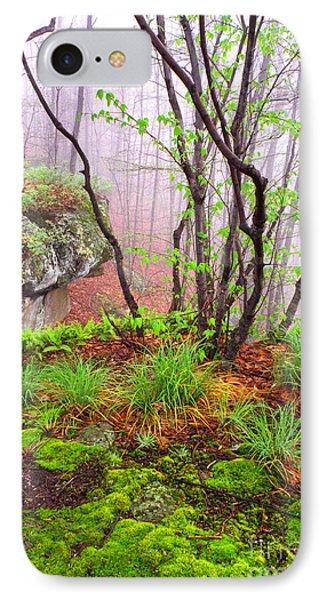 Foggy Spring Morning Phone Case by Thomas R Fletcher