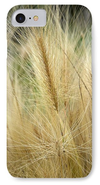 Foxtail Barley IPhone Case by Jouko Lehto