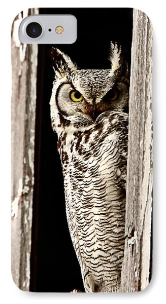 Great Horned Owl Perched In Barn Window IPhone Case