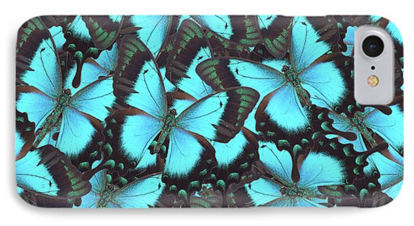 Green Swallowtail Butterfly IPhone Case by Anastasy Yarmolovich