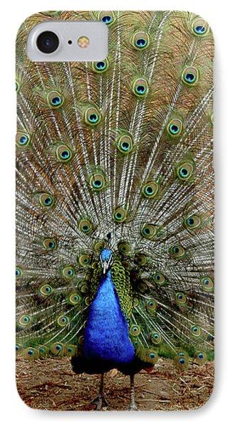 IPhone Case featuring the photograph  Iridescent Blue-green Plumage by LeeAnn McLaneGoetz McLaneGoetzStudioLLCcom