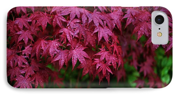 Japanese Maple Rain IPhone Case