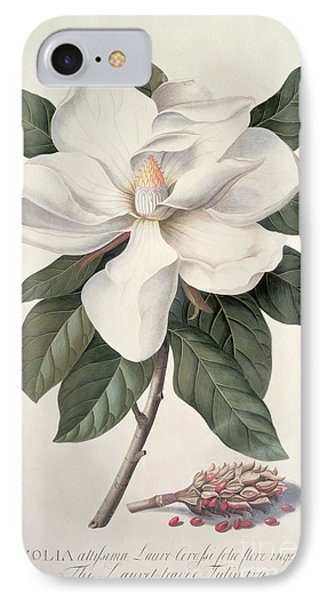 Magnolia IPhone Case by Georg Dionysius Ehret