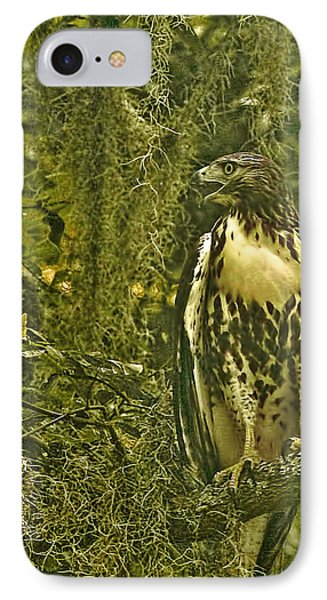 Red-tail Posing Phone Case by Phill Doherty