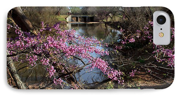 Redbuds And A Distant Bridge IPhone Case