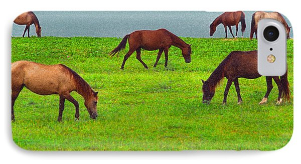 Seaside Grazing IPhone Case by Thomas R Fletcher
