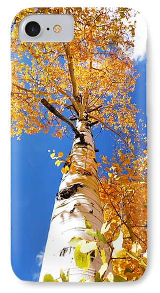 IPhone Case featuring the photograph  The Aspen Crown Dixie National Forest Utah by Deborah Moen