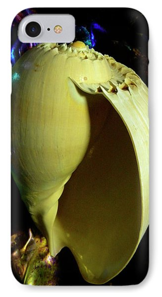 Voluta Amphora Seashell Phone Case by Frank Wilson