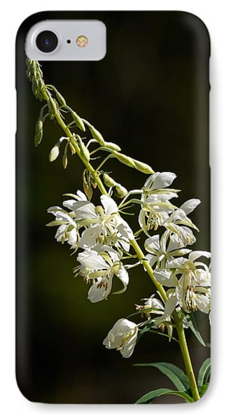 IPhone Case featuring the photograph  White Fireweed by Jouko Lehto