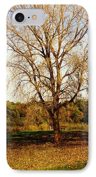 Wisdom Tree Phone Case by Kyle West
