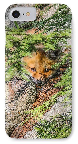 #0527 - Fox Kit IPhone Case