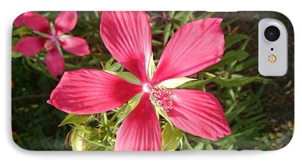 Hibiscus Coccineus IPhone Case