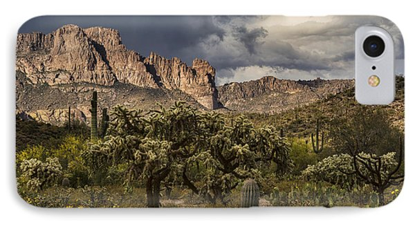 A Rainy Desert Day  IPhone Case