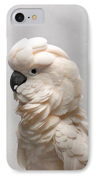 Cockatoo iPhone 7 Case - A Salmon-crested Cockatoo by Joel Sartore