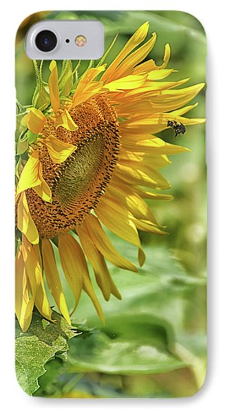 A Sunny Day IPhone Case