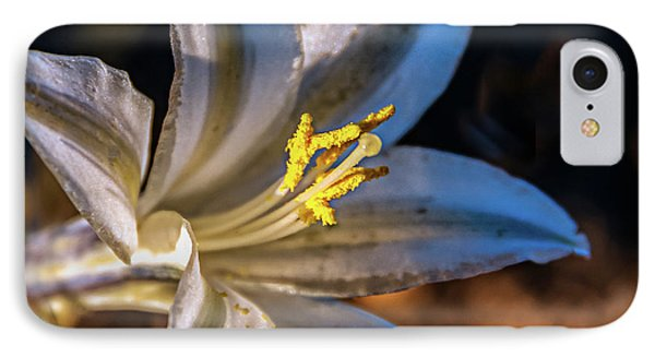 IPhone Case featuring the photograph Ajo Lily by Robert Bales