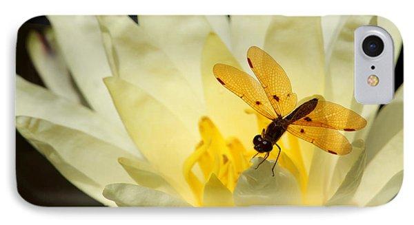 Amber Dragonfly Dancer 2 IPhone Case