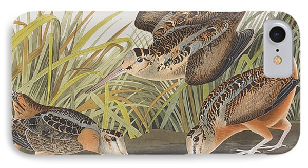 American Woodcock IPhone Case by John James Audubon