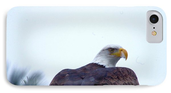 An Eagle Stretching Its Wings IPhone Case by Jeff Swan