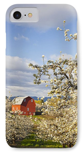 Apple Blossom Trees And A Red Barn In Phone Case by Craig Tuttle