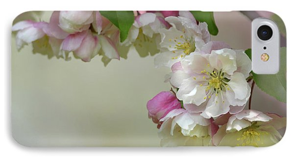 IPhone Case featuring the photograph Apple Blossoms  by Ann Bridges