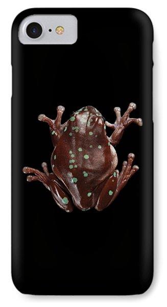 Australian Green Tree Frog, Or Litoria Caerulea Isolated Black Background IPhone 7 Case by Sergey Taran