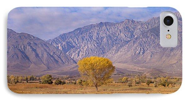 Autumn Color Along Highway 395, Sierra IPhone Case