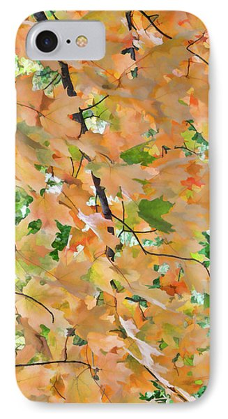 Autumn Foliage 3 IPhone Case by Lanjee Chee