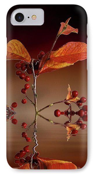 IPhone Case featuring the photograph Autumn Leafs And Red Berries by David French