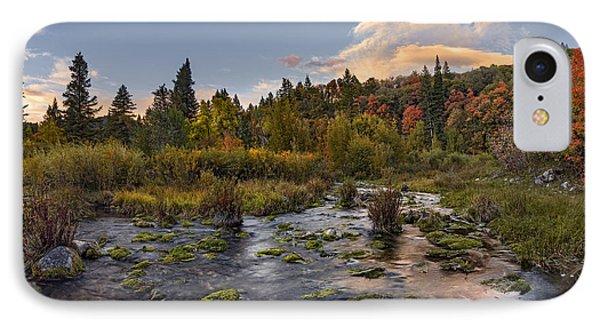 Autumn Sunset IPhone Case by Leland D Howard