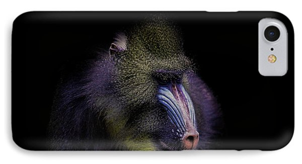 Baboon Portrait IPhone Case by Martin Newman