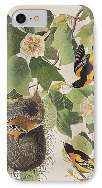 Baltimore Oriole IPhone Case by John James Audubon