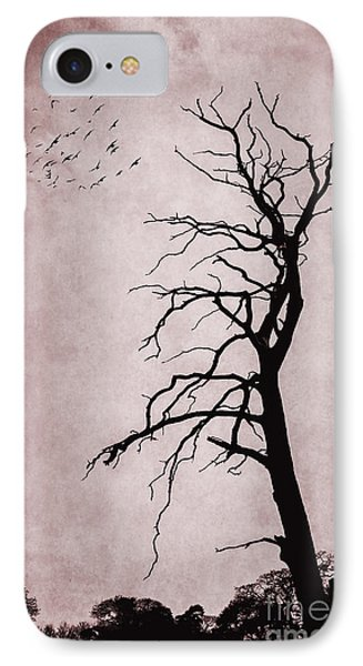 Bare Tree IPhone Case by Svetlana Sewell