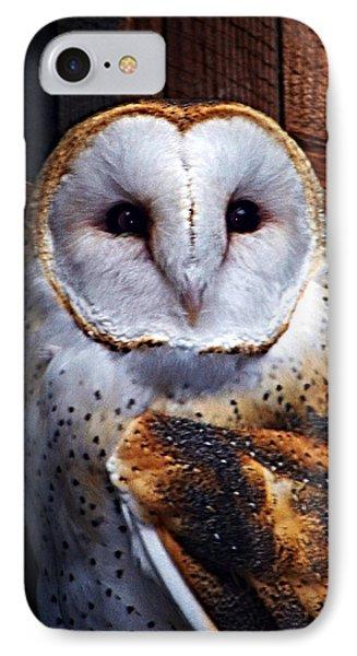 Barn Owl  Phone Case by Anthony Jones