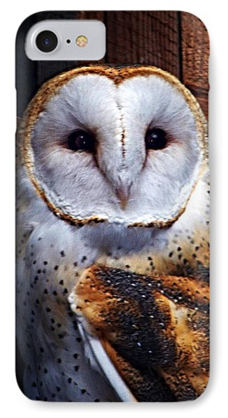 Barn Owl  IPhone Case by Anthony Jones
