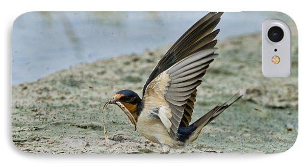 Barn Swallow IPhone Case