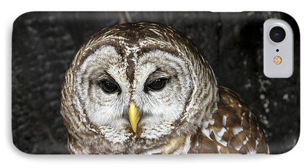IPhone Case featuring the photograph Barred Owl by Tyson and Kathy Smith
