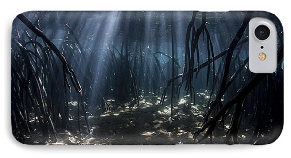 Beams Of Sunlight Filter Among The Prop IPhone Case by Ethan Daniels