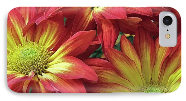 IPhone Case featuring the photograph Beautiful Trio by Allen Beatty