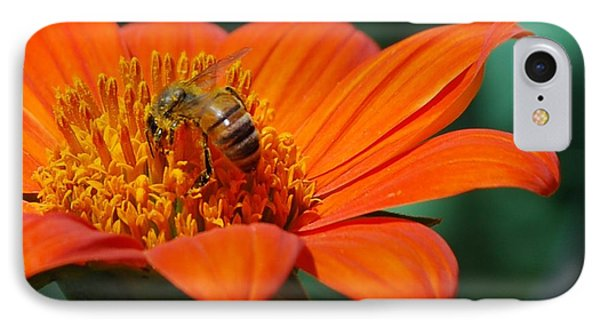 IPhone Case featuring the photograph Bee-utiful by Debbie Karnes
